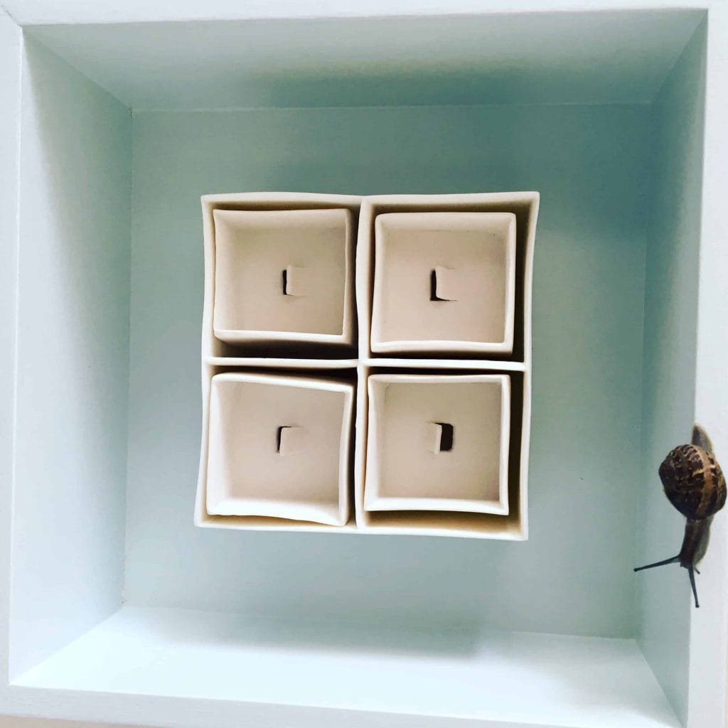 """""""Miniature Spaces"""" by Isobel Egan featured in """"In Praise of Slowness and All Things Snails."""""""