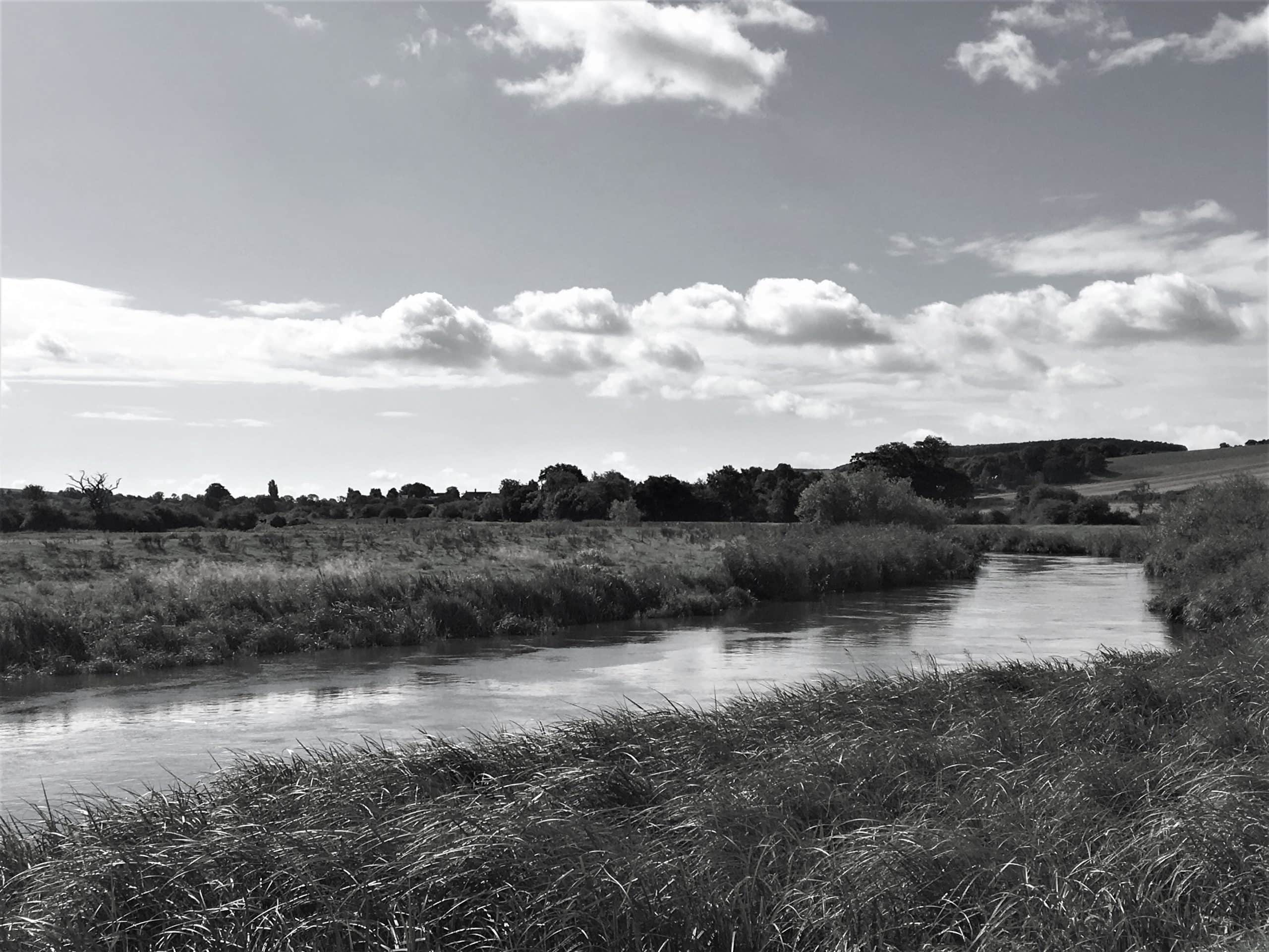 """River Arun, Sussex. Featured in Mary Oliver's """"Upstream"""" in the Examined Life Library."""