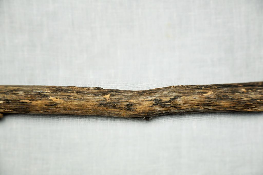 """Stick from Georgia. In """"Things We Cannot Abandon."""""""