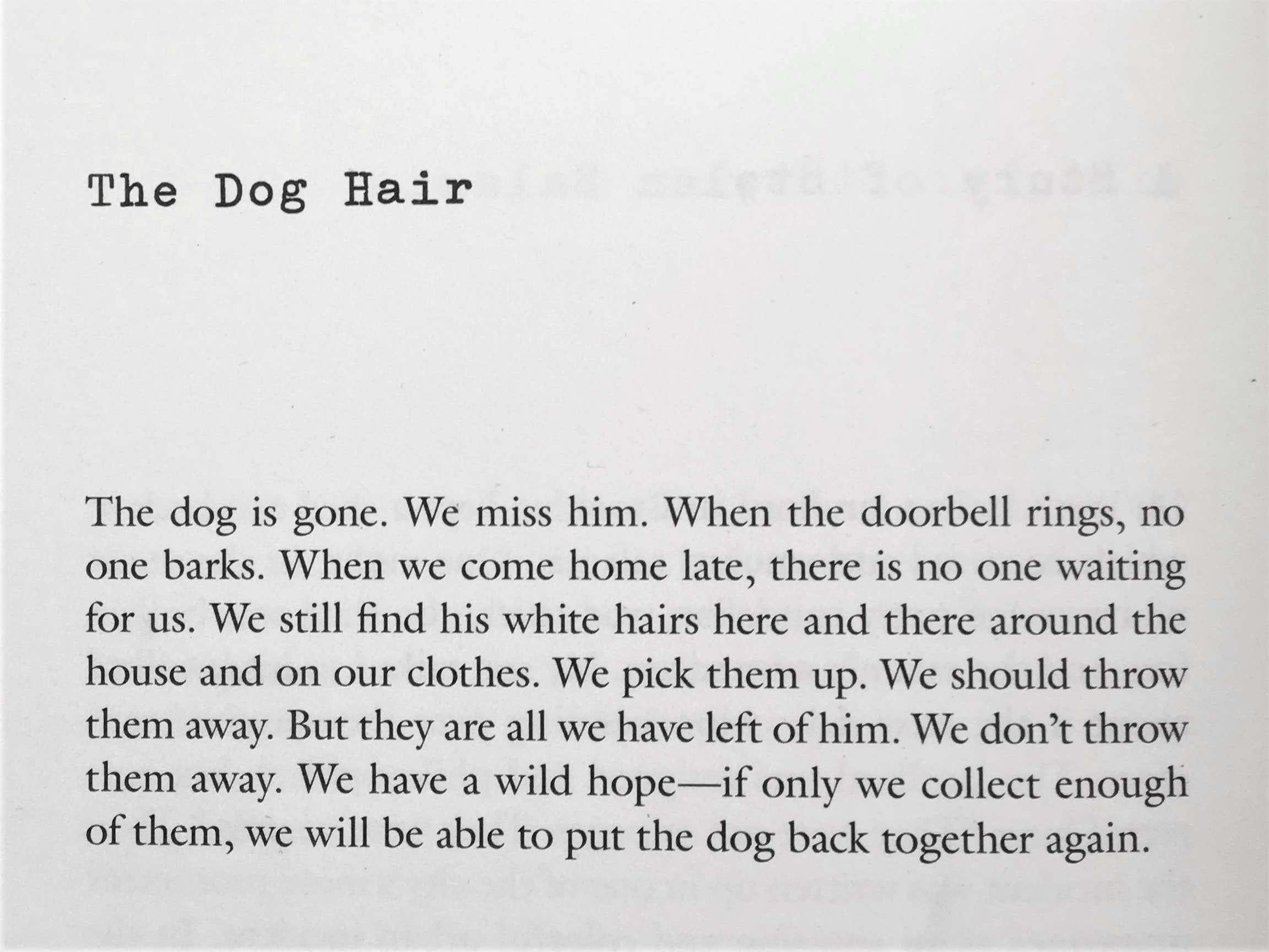 "Lydia Davis' ""The Dog Hair"" from Can't & Won't in the Examined Life Library."