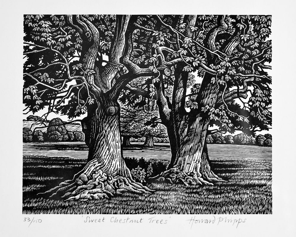 """Sweet Chestnut"" wood engraving by printmaker and engraver Howard Phipps used in Examined Life Library book: ""I Can't Stay Long"" by Laurie Lee"