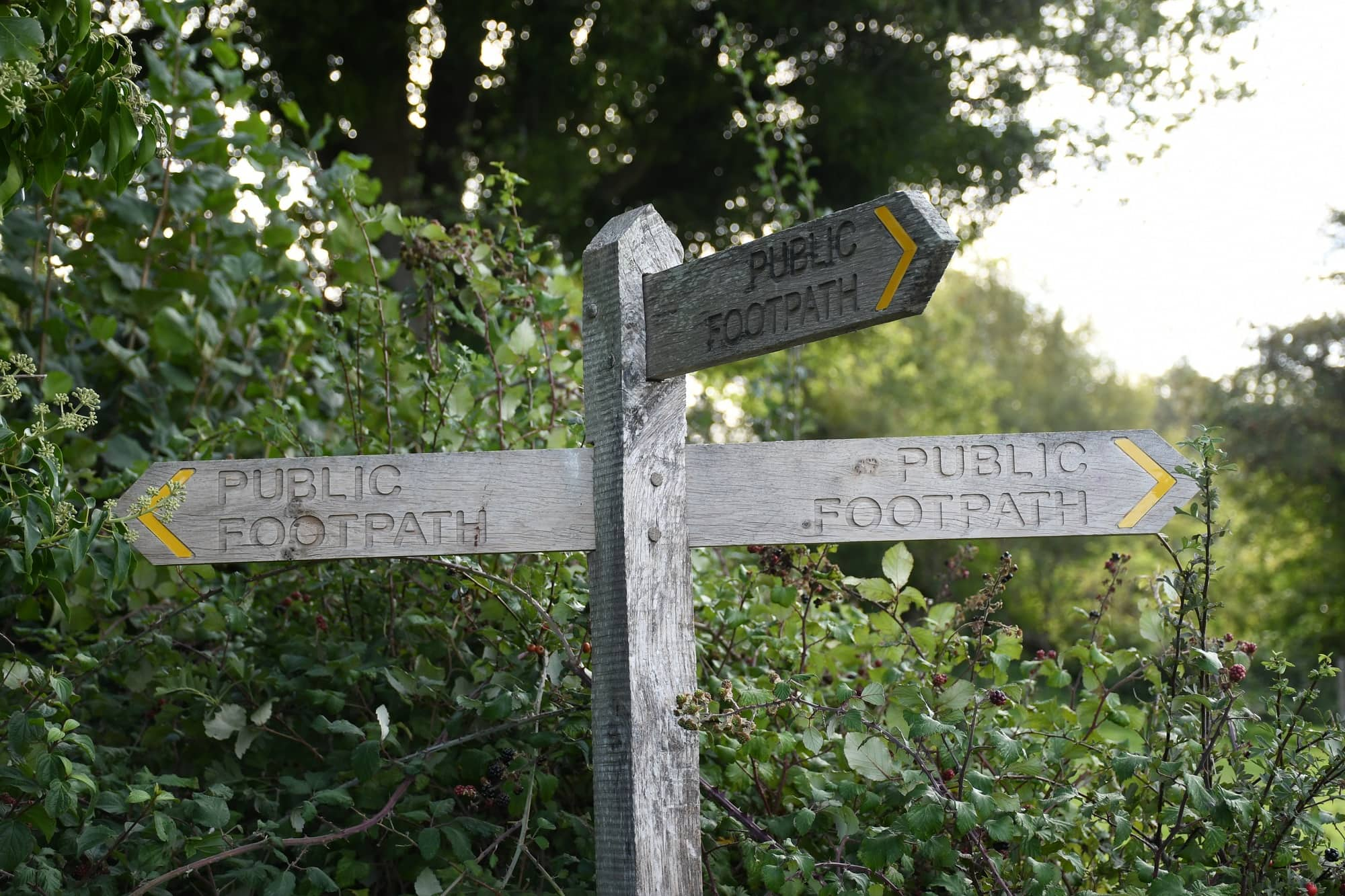 """Footpath signpost featured in Laurie Lee's """"Cider with Rosie"""" in the Examined Life Library."""